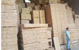 """Doanh nghiệp xuất khẩu gỗ Việt """"nắm dao đằng lưỡi"""""""