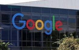Indonesia điều tra Google với cáo buộc trốn thuế
