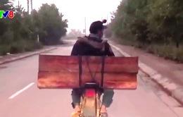 Quảng Nam tích cực ngăn chặn nạn vận chuyển gỗ lậu bằng xe máy