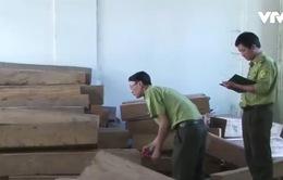 Kon Tum: Phát hiện hàng trăm hộp gỗ xẻ không rõ nguồn gốc