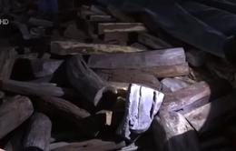 Bắt hàng chục tấn gỗ quý trên biển