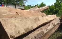 Quảng Trị tích cực điều tra vụ phá rừng đầu nguồn Bến Hải