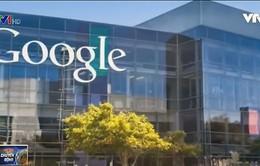Fact Check - Xác thực thông tin theo cách của Google