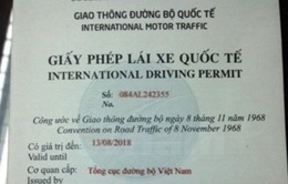 Điểm khác trong việc cấp đổi GPLX quốc tế giữa Hà Nội và TP.HCM