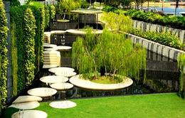 """Bí quyết trở thành """"thành phố trong vườn"""" của Singapore"""