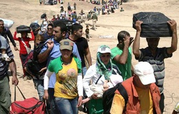 Niềm mong mỏi của những người Syria tha hương do nội chiến