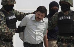 Mexico sẵn sàng dẫn độ trùm ma túy El Chapo đến Mỹ
