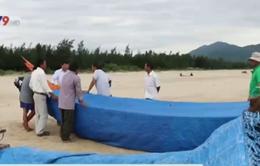 Tháng 7/2016, báo cáo Chính phủ về đánh giá thiệt hại sự cố môi trường tại Hà Tĩnh