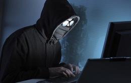 Đức phá tổ chức tội phạm mạng xuyên quốc gia