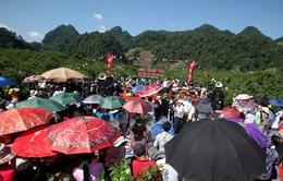 Hàng nghìn du khách đổ về dự Lễ hội hái mận 2016