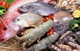 """Sự kiện nổi bật tuần: Bộ Y tế công bố cá biển miền Trung """"ăn được hay chưa"""""""