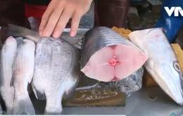 Vũng Tàu: Đa số mẫu thử hải sản đều chứa formol, hàn the