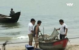 Sự cố môi trường do Formosa: Sẽ truy cứu trách nhiệm cá nhân chặt chẽ