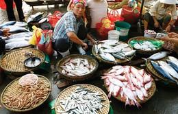 Khó phân biệt hải sản tầng lửng, tầng đáy