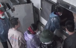 Tiêu hủy 275 tấn hải sản nhiễm cadimi và phenol ở Hà Tĩnh