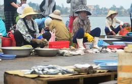 Niêm yết công khai các loại hải sản chưa an toàn