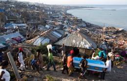 Liên Hợp Quốc kêu gọi viện trợ cho Haiti