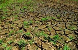 """""""Hạn hán ở miền Trung Nam Bộ là hiện tượng đã được báo trước"""""""