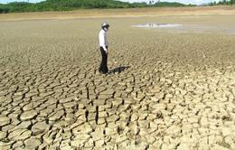 Thứ trưởng Bộ NN&PTNT: Hạn hán ở Nam Trung Bộ và Tây Nguyên đã rất nặng nề
