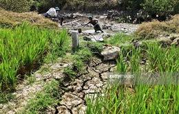 Việt Nam thiệt hại hơn 14.000 tỷ VND do thiên tai trong 20 năm