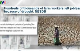 Hạn hán nghiêm trọng tại Thái Lan, Campuchia