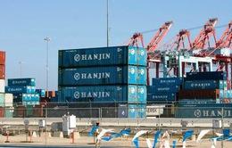 Nhiều DN Việt thiệt hại khi Hanjin nộp đơn xin phá sản