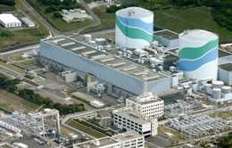 Nhật Bản tái khởi động các lò phản ứng hạt nhân an toàn