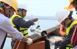 Thành lập hội đồng cấp quốc gia tìm nguyên nhân hải sản chết
