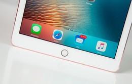 Apple sẽ ra mắt 3 mẫu iPad Pro mới vào năm 2017?