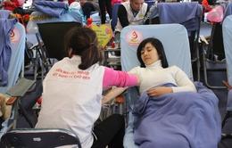 Ra mắt trang tin điện tử Hiến máu nhân đạo tại TP.HCM