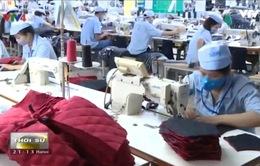FTA Việt Nam - EAEU không gây khó khăn cho sản xuất trong nước