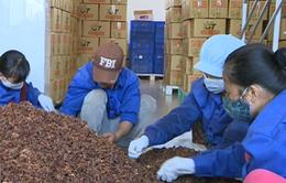 DN Việt gấp rút chuẩn bị đón đầu FTA Việt Nam - EAEU