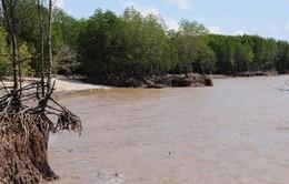Mực nước ĐBSCL đang dâng