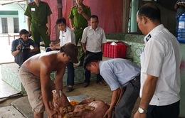 Đánh tráo heo bị dính chất cấm để mang đi giết mổ