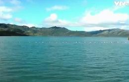 Mực nước lòng hồ thủy điện Quảng Trị đang ở mức an toàn