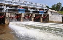 Hồ Dầu Tiếng xả lũ lưu lượng 100m3/s