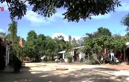 Đà Nẵng tích cực hỗ trợ hộ nghèo, cận nghèo