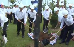 Hà Nội trồng mới 1 triệu cây xanh