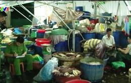 Huế: Phát hiện 4 cơ sở sử dụng chất tẩy trắng bắp chuối và mít non