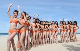 Hoa hậu Biển Việt Nam 2016: Kỳ vọng ấn tượng và đặc sắc