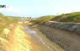 Đăk Lăk: Thêm 250 hồ thủy lợi cạn nước vào cuối tháng 3