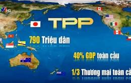 Chính phủ trình Quốc hội phê chuẩn Hiệp định TPP vào tháng 7