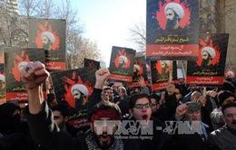 Căng thẳng Iran - Saudi Arabia: Sự chia rẽ giữa 2 nhánh Hồi giáo Shiite và Sunni