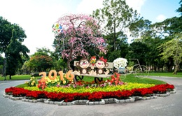 Kỳ hoa, dị thảo quy tụ ở Hội hoa Xuân TP.HCM 2016