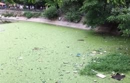 Hà Nội sẽ xử lý xong ô nhiễm hồ nội thành đến hết năm 2016