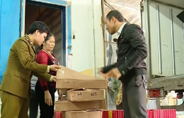 Quảng Bình đã tiêu hủy 504 tấn hải sản không đảm bảo an toàn