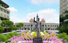 Phối cảnh đường hoa Nguyễn Huệ xuân Đinh Dậu 2017