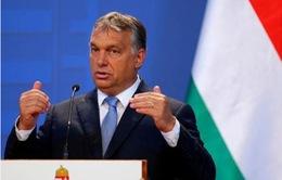 Quốc hội Hungary bác bỏ nỗ lực của Thủ tướng về sửa đổi Hiến pháp