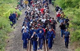 Siết chặt biên giới châu Âu – cơ hội cho những kẻ buôn người