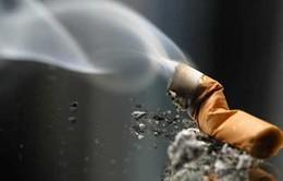 Gia tăng tỷ lệ phụ nữ mắc ung thư phổi do hút thuốc thụ động